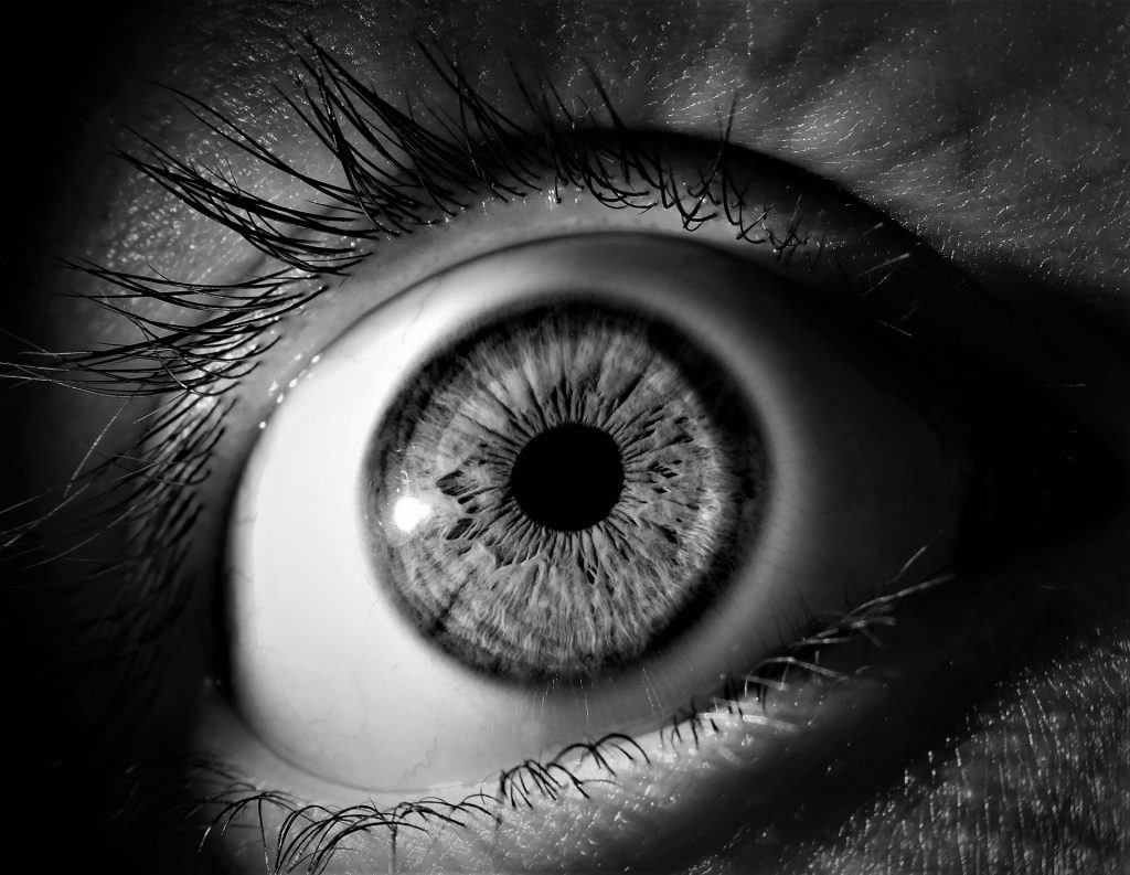 Our Riddle App asked one about eyes and pupils. This is an image about both.